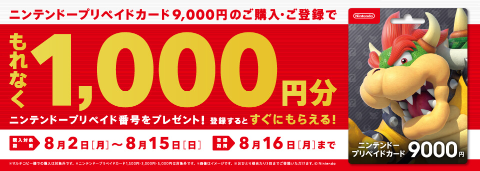 https://vdpro.jp/sej.nintendo24/